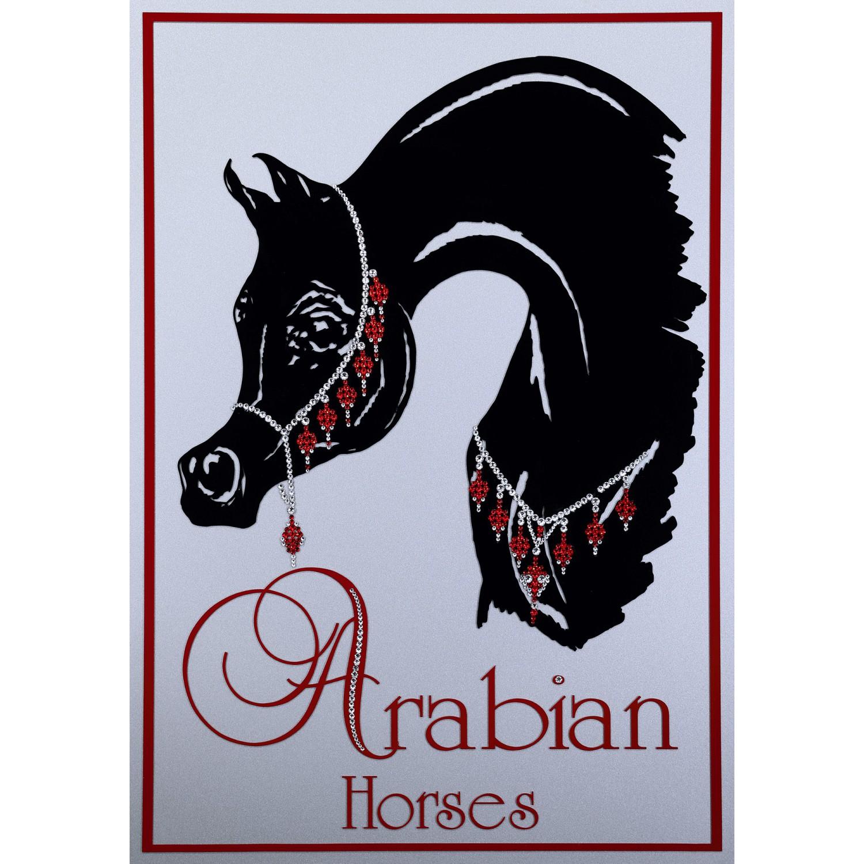 Sparkling Plate The Black Arab Horse